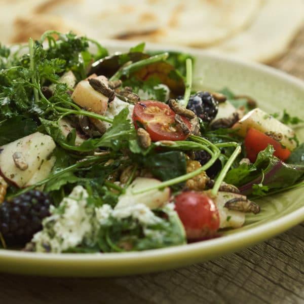 Rezept Wicked Cricket Salat Allgäuer Heimchen