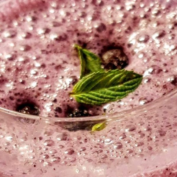 Wicked Cricket Rezept Blaubeer Drink Wurm
